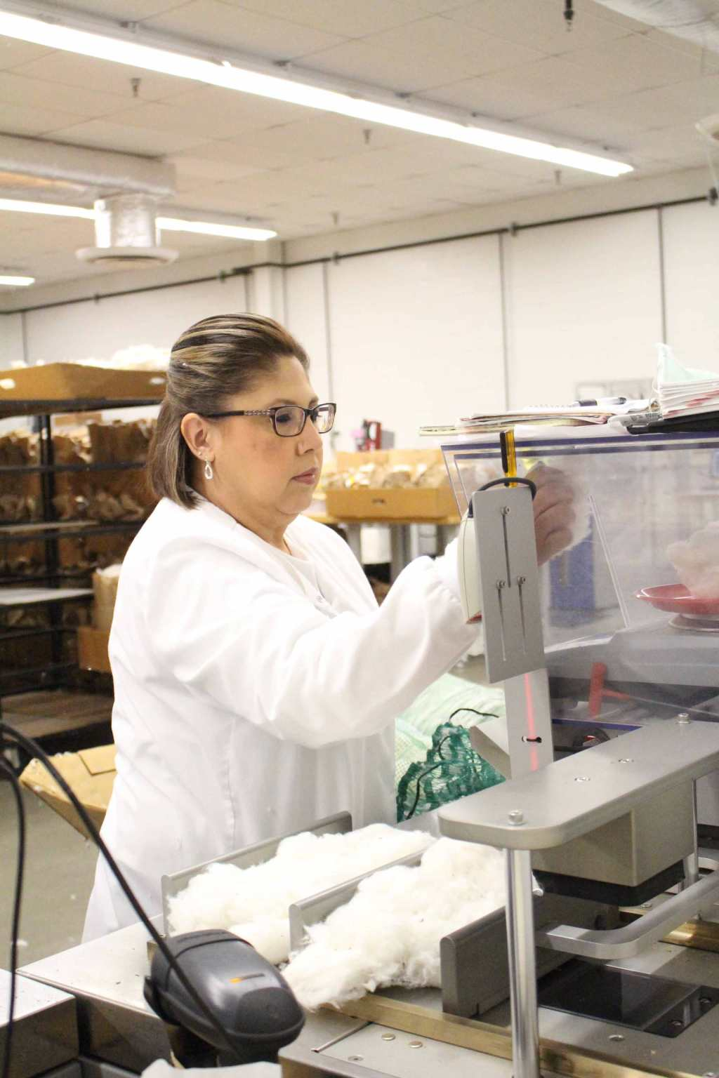 Biopolymer & Fiber research Institute employee weighing cotton and visually analyzing the sample.