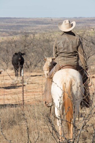 Bedford Jones knew his calling was to return home to the ranch after graduating college.