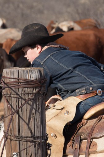 Though young, Henry Jones knows what he needs to get done to contribute to the ranch.
