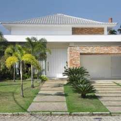 Tipos de palmeiras e coqueiros para deixar seu jardim mais encantador