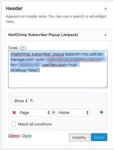 paste MailChimp code