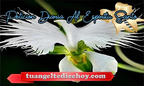 PETICIÓN DIARIA AL ESPÍRITU SANTO 16/05/2020
