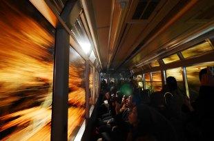 [自助旅行] 京都賞楓,叡山電車楓葉隧道,夜楓隧道點燈