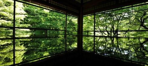 [自助旅行] 京都新綠,八瀨琉璃光院新綠