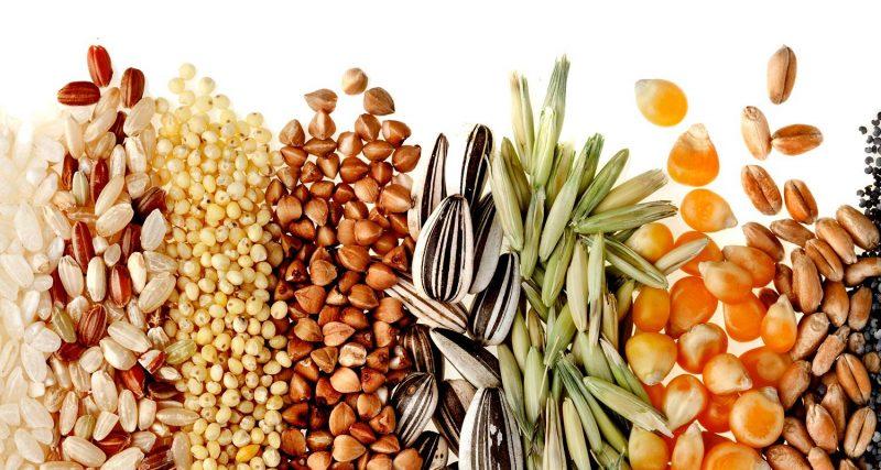 Conhe 231 A Os Alimentos Ricos Em Carboidratos Simples E Complexos
