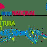 Concours international de Tours 2017