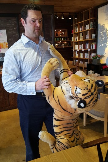Tiger fighting