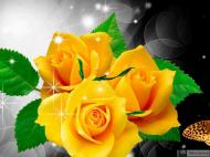 19-Rose_311239_3196885140186