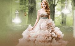 Taylor Swift Fan