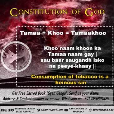 God Constitution eng (20)