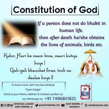 God Constitution eng (54)