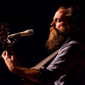 The American Soundscape of Iron and Wine.