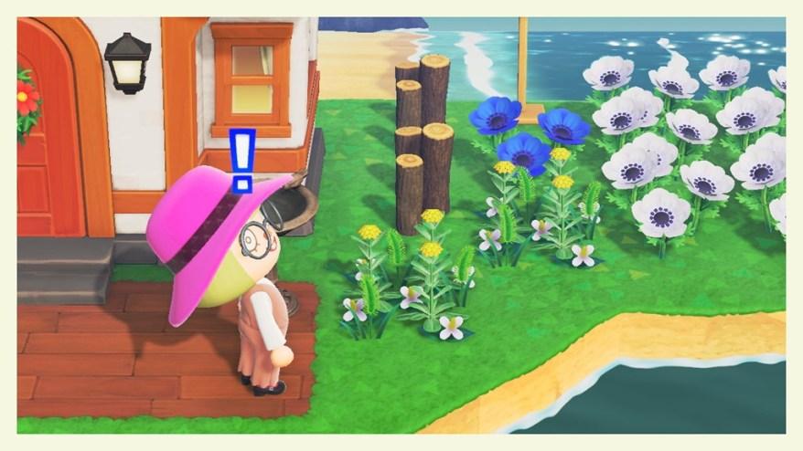 【あつ森】6月になったら夏になっていた~! + 写真大放出