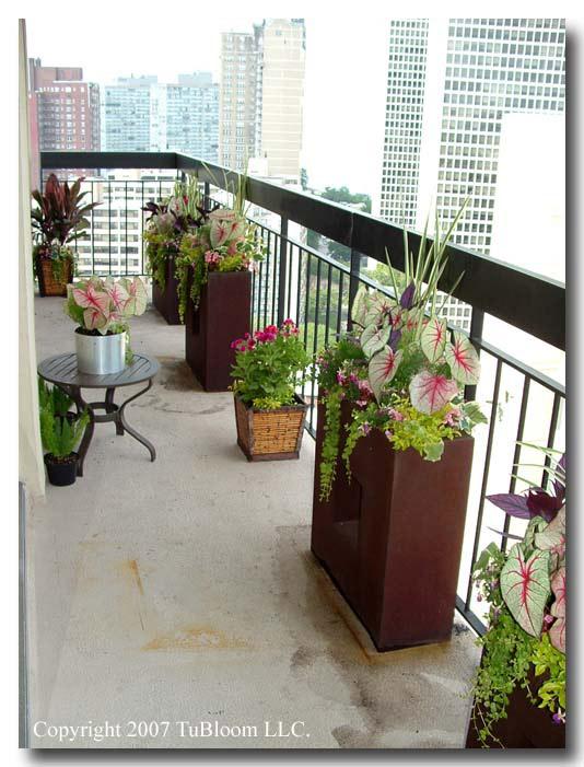 condo patio garden ideas