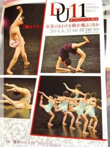 Dance Universe