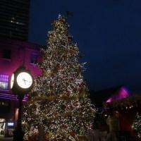 クリスマスマーケットのツリー
