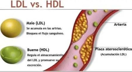Valores Normales de Perfil Lipidico