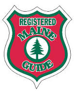 Guide badge