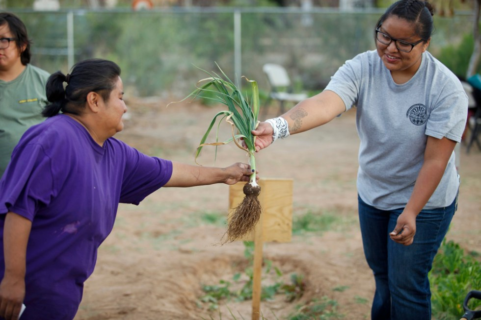 Brittany Gonzales, right, an intern at Tohono O'odham Community Action, educated parents about a garden at Indian Oasis Elementary School that was planted to teach students about healthier foods.