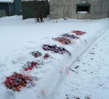 This is not in fact a scene of care bear slaughter, it's snow dyeing, which makes quite a mess
