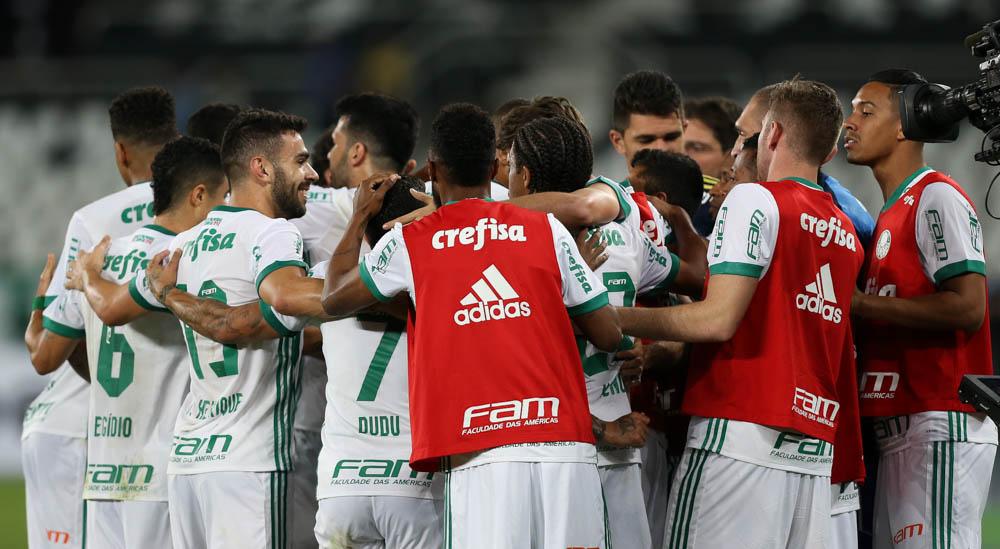 Botafogo vs Palmeiras