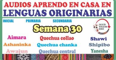 """SEMANA 30: AUDIOS APRENDO EN CASA EN """"LENGUAS ORIGINARIAS""""- (Descarga aquí)"""