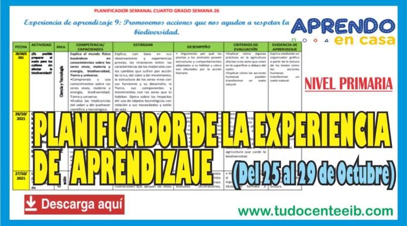 APRENDO EN CASA: PLANIFICADOR DE LAS EXPERIENCIAS DE APRENDIZAJE para Nivel PRIMARIA – Del 25 al 29 de Octubre (Descarga aquí)