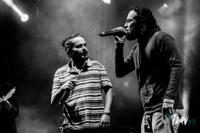 140516_festival_alternativo_londrina_Vinicius_Grosbelli_00118