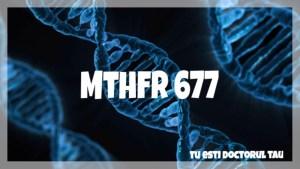 Mutatia MTHFR de tip C677T