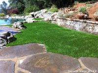 Rural Back Yard Artificial Grass Lawn