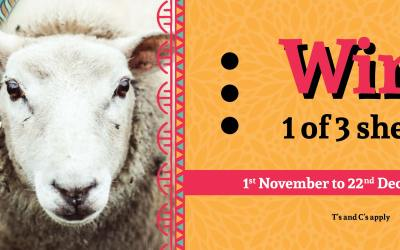 Win a Sheep