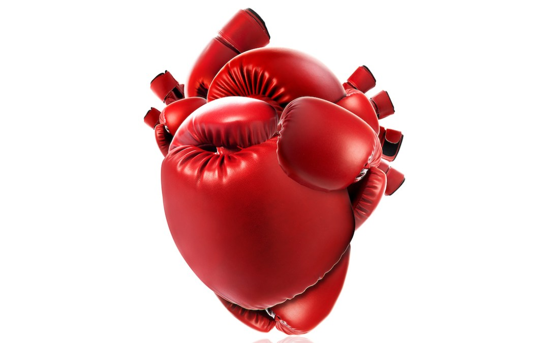Heart of a Fighter