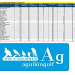 170625 AGU, Clasificación del torneo