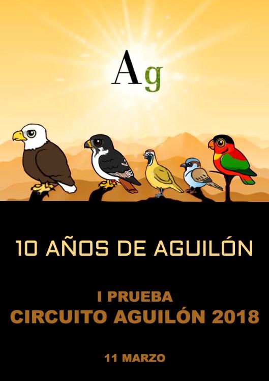 180311 AGU, Presentación del circuito
