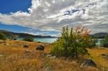 Le lac Tekapo, symphonie de couleurs