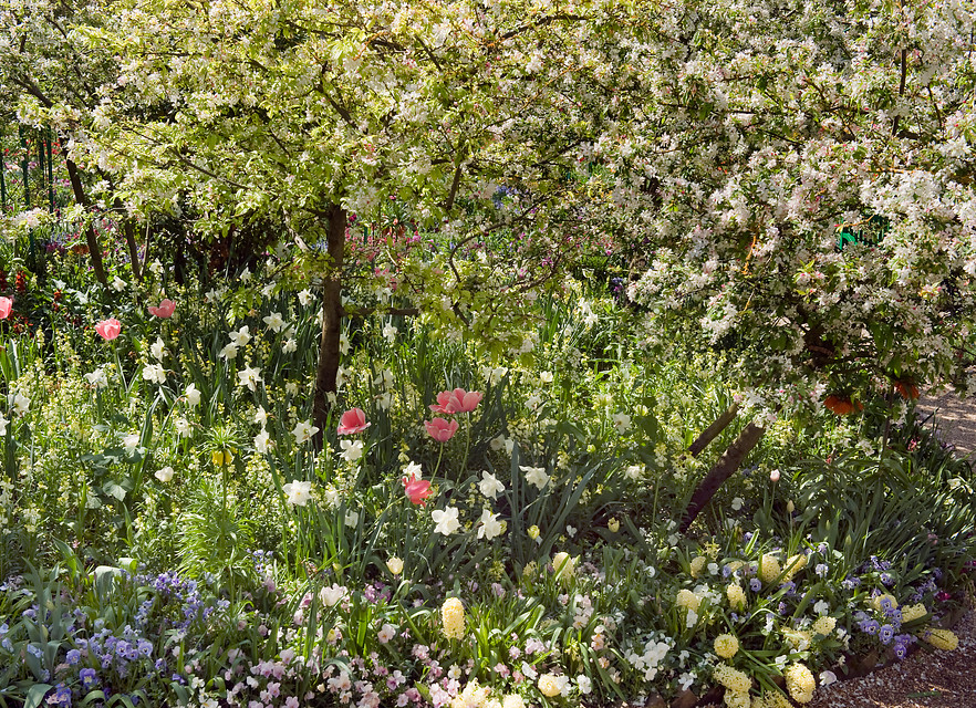 Lentespektakel in Tuinen van Claude Monet in Giverny