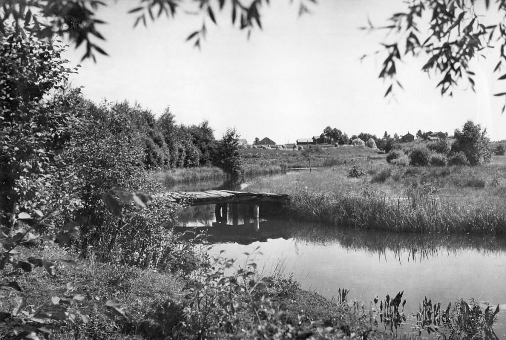 Köyliönjoki