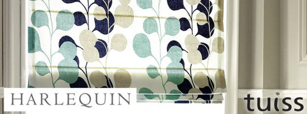 tuiss-blog-content-harlequin-banner