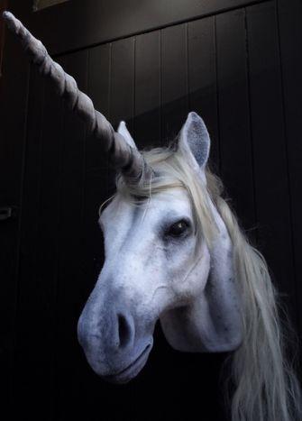faux-taxidermy-unicorn-head-25628-p[ekm]335x467[ekm]