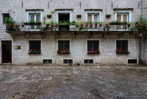 Czarnogóra Kotor, Montenegro Kotor, Kotor Old Town