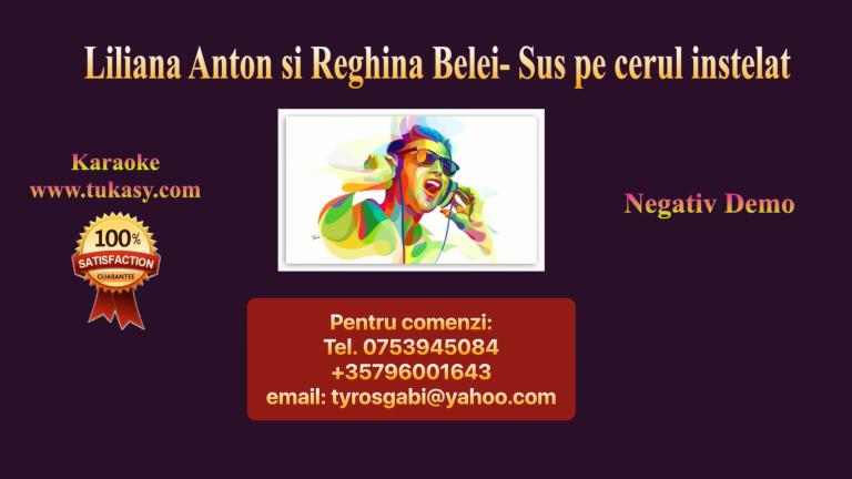 Sus pe cerul instelat – Liliana Anton si Reghina Belei – Negativ Karaoke Demo by Gabriel Gheorghiu