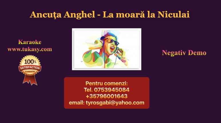 La moara la Niculai – Ancuta Anghel