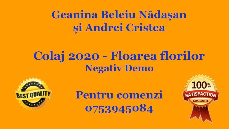 Geanina Beleiu Nadasan si Andrei Cristea – Colaj 2020 – Floarea florilor (Karaoke/Instrumental/Negativ)