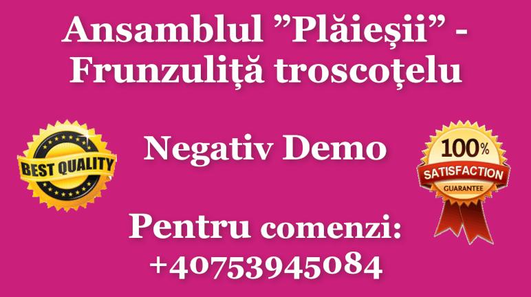 Frunzulita troscotelu – Nicolae Gribincea si Ansamblul Plaiesii
