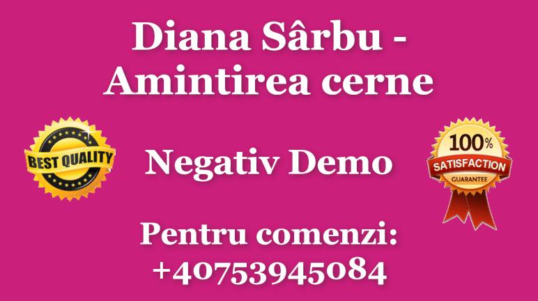 Amintirea cerne – Diana Sarbu (Karaoke / Instrumental) Negativ by Gabriel Gheorghiu