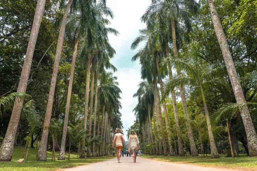 Kandy-sri-Lanka-Royal-Botanical-Gardens
