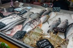 Fischauslage