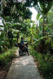 Dschungel-Tunnel