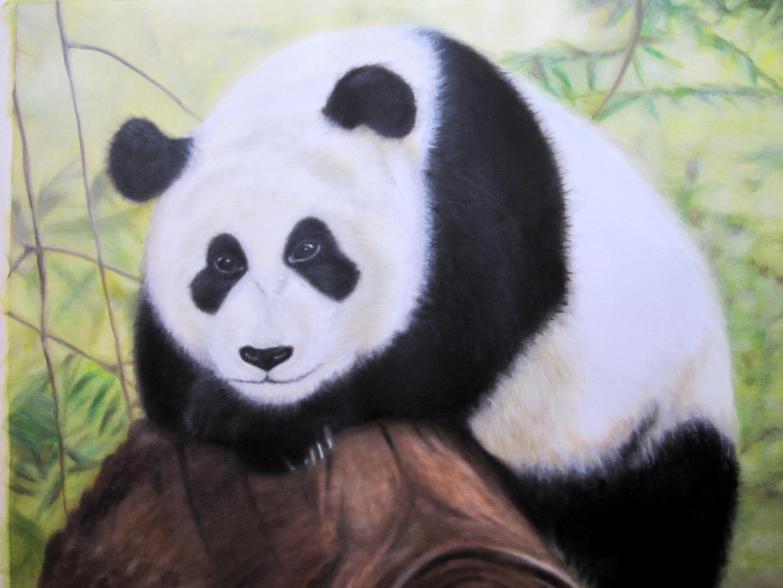 熊貓 | [組圖+影片] 的最新詳盡資料** (必看!!) - www.go2tutor.com
