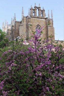Toledo en un día